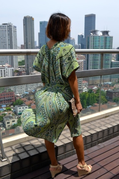 https://couturenomad.com/books-patterns/collection-12-steps/robesdresses/guilin/